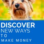 Discover new ways to make money from your home