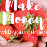 Make money with your garden. Yes, you can definitely make from your own garden!